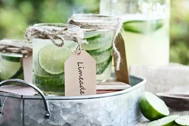 Limeade Low Carb Limo